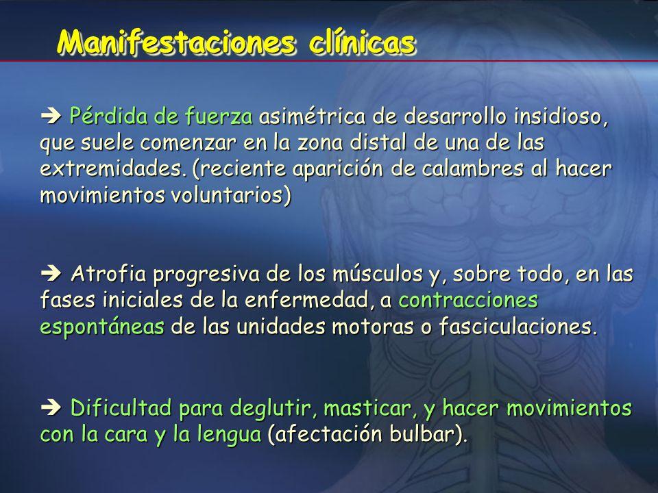 La muerte de las neuronas motoras periféricas del tronco del encéfalo y de la médula espinal provoca la denervación y consiguiente atrofia de las fibr