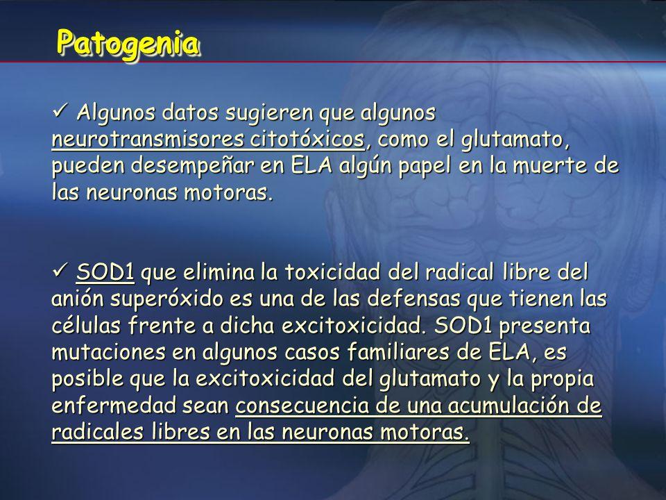 EpidemiologíaEpidemiología Incidencia de 1 a 3 casos nuevos por 100000 habitantes y una prevalencia 3 a 5 por 100000 habitantes (España I=2/100000 y P