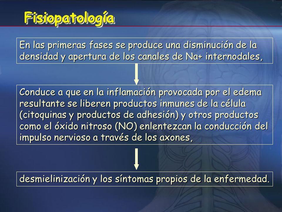 CONDUCCIÓN NORMAL CONDUCCIÓN FIBRA DESMIELINIZADA