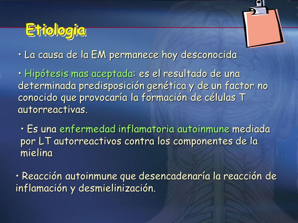 DESMIELINIZACIÓN + - Disminución velocidad de la conducción axonal (bloqueo variable) *el bloqueo podría producirse en respuesta a Tª o alteraciones m