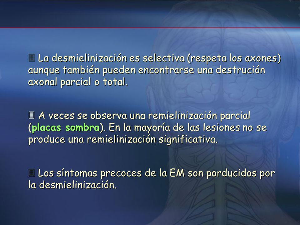 Las lesiones están distribuidas por todo el SNC Las lesiones están distribuidas por todo el SNC Las placas de desmielinización son de dos tipos depend