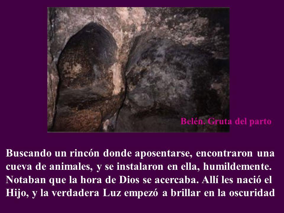 Buscando un rincón donde aposentarse, encontraron una cueva de animales, y se instalaron en ella, humildemente. Notaban que la hora de Dios se acercab