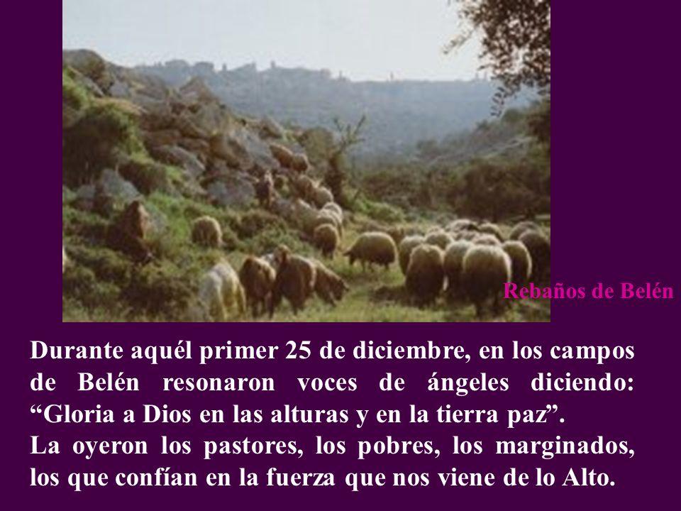 Durante aquél primer 25 de diciembre, en los campos de Belén resonaron voces de ángeles diciendo: Gloria a Dios en las alturas y en la tierra paz. La