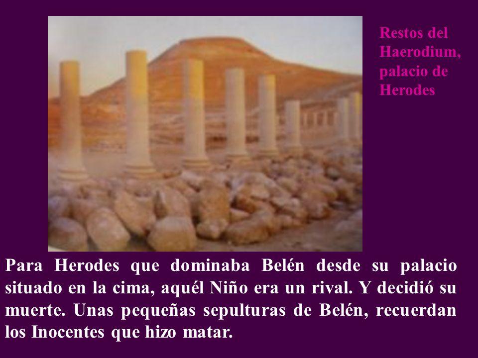 Para Herodes que dominaba Belén desde su palacio situado en la cima, aquél Niño era un rival. Y decidió su muerte. Unas pequeñas sepulturas de Belén,