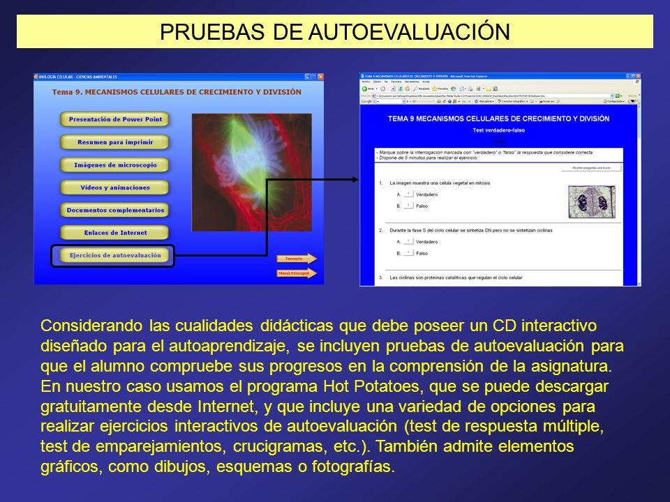 PRUEBAS DE AUTOEVALUACIÓN Considerando las cualidades didácticas que debe poseer un CD interactivo diseñado para el autoaprendizaje, se incluyen prueb