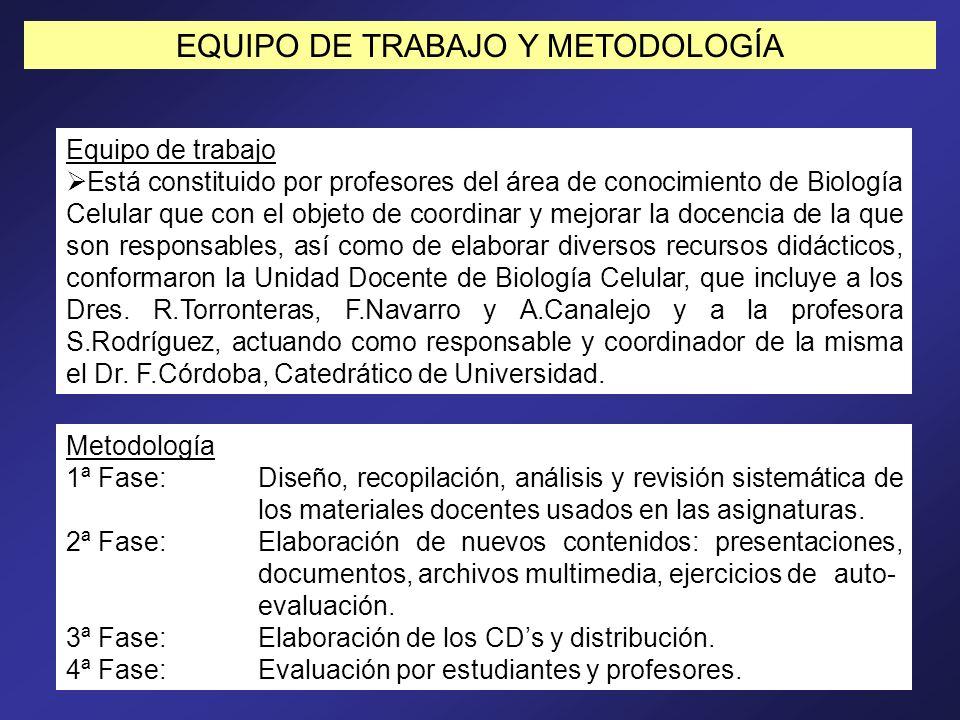 EQUIPO DE TRABAJO Y METODOLOGÍA Equipo de trabajo Está constituido por profesores del área de conocimiento de Biología Celular que con el objeto de co