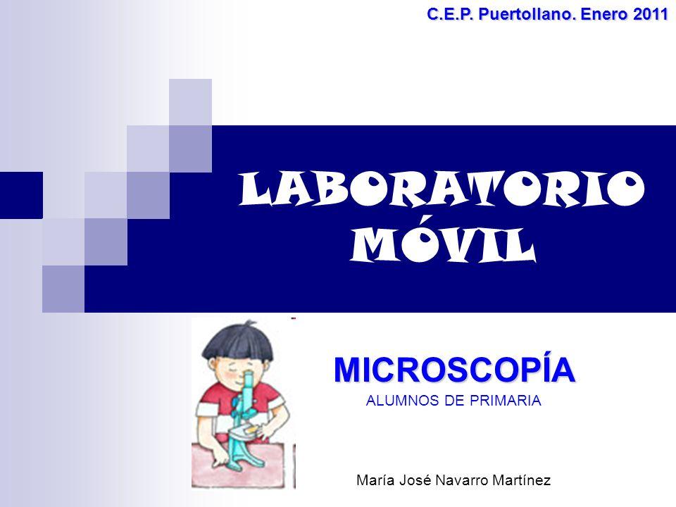 LABORATORIO MÓVIL MICROSCOPÍA ALUMNOS DE PRIMARIA María José Navarro Martínez C.E.P.