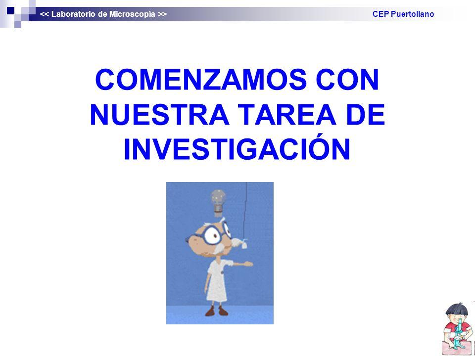 COMENZAMOS CON NUESTRA TAREA DE INVESTIGACIÓN > CEP Puertollano
