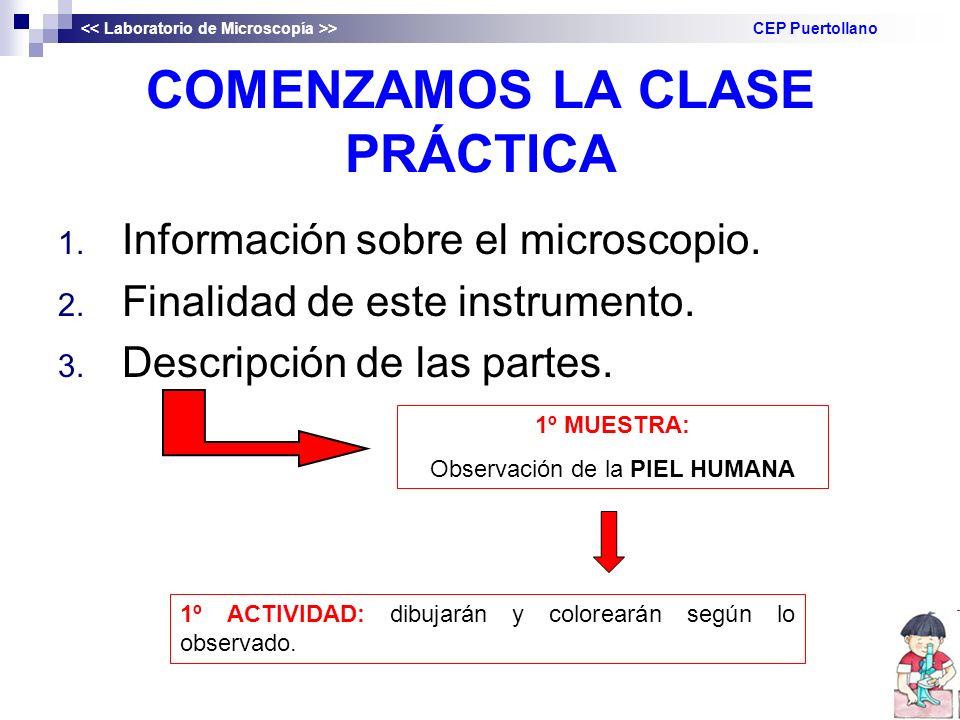 COMENZAMOS LA CLASE PRÁCTICA 1. Información sobre el microscopio. 2. Finalidad de este instrumento. 3. Descripción de las partes. > CEP Puertollano 1º