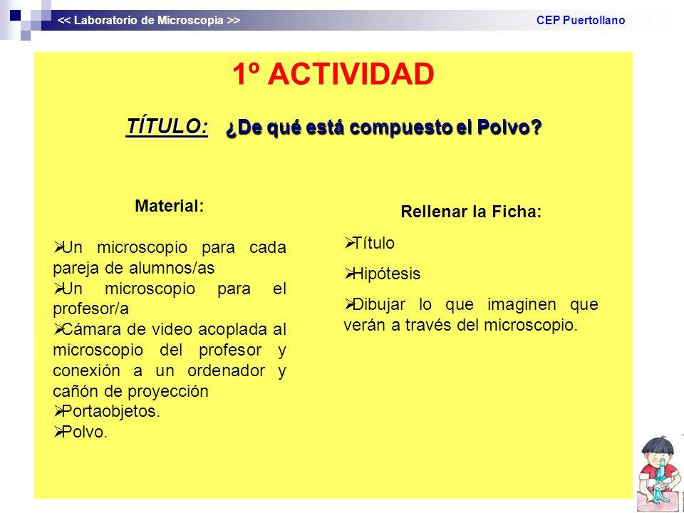 1º ACTIVIDAD TÍTULO: ¿De qué está compuesto el Polvo? > CEP Puertollano Material: Un microscopio para cada pareja de alumnos/as Un microscopio para el