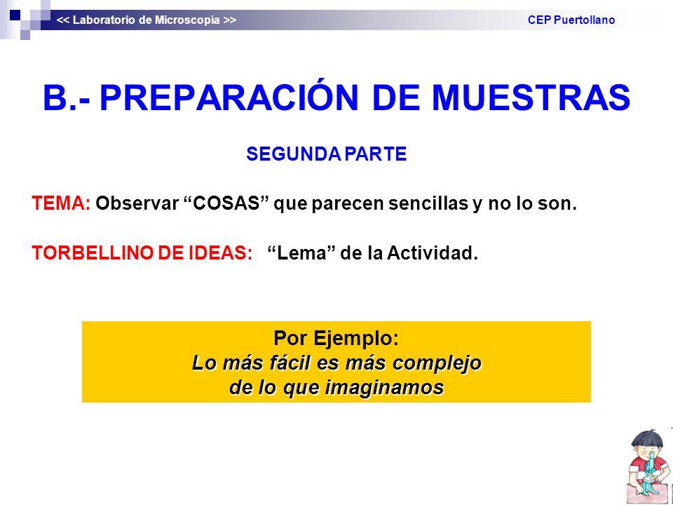 B.- PREPARACIÓN DE MUESTRAS > CEP Puertollano SEGUNDA PARTE TEMA: Observar COSAS que parecen sencillas y no lo son.