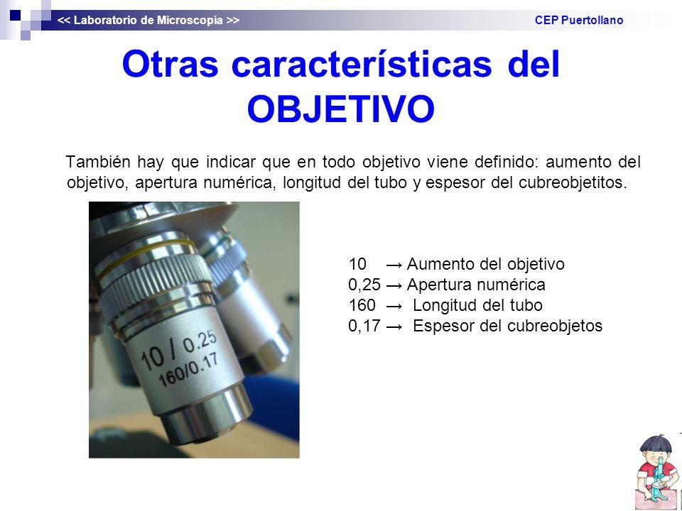 Otras características del OBJETIVO También hay que indicar que en todo objetivo viene definido: aumento del objetivo, apertura numérica, longitud del tubo y espesor del cubreobjetitos.