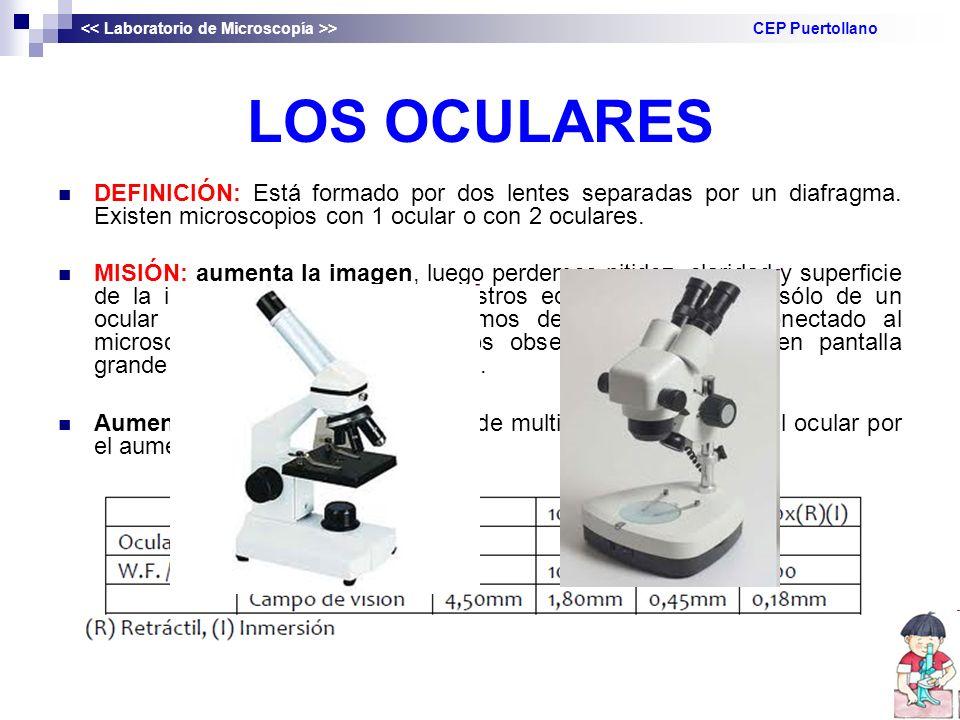 LOS OCULARES DEFINICIÓN: Está formado por dos lentes separadas por un diafragma. Existen microscopios con 1 ocular o con 2 oculares. MISIÓN: aumenta l