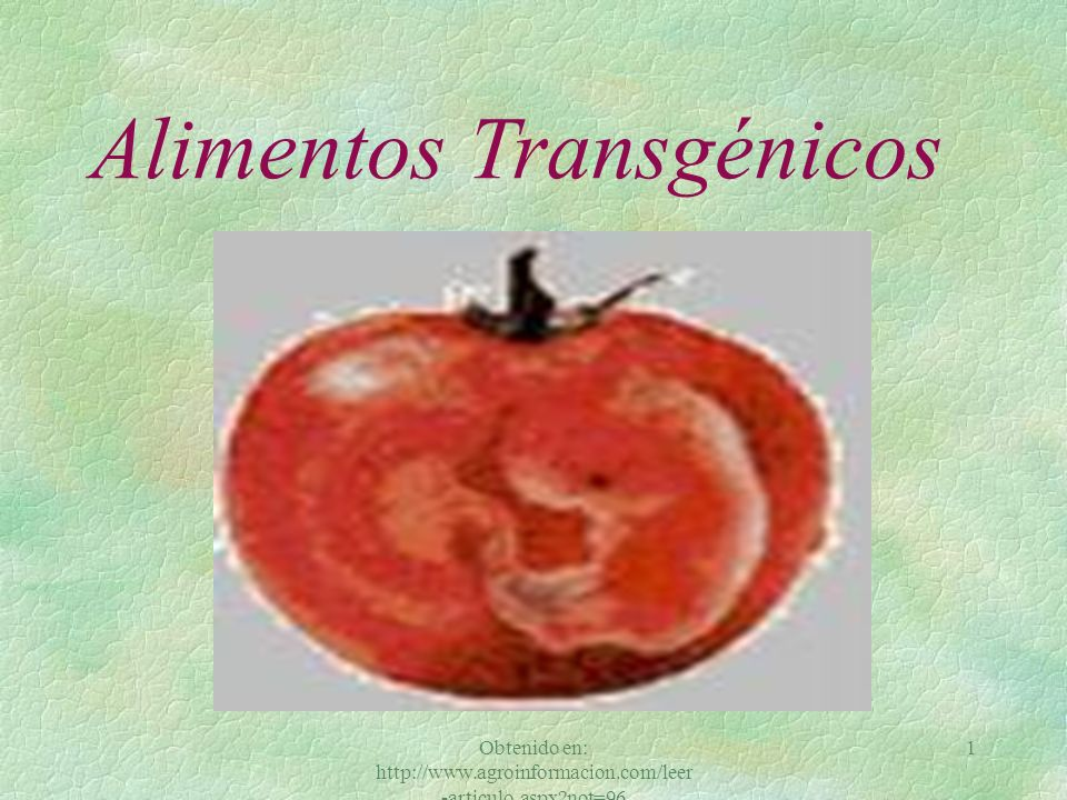 Obtenido en: http://www.agroinformacion.com/leer -articulo.aspx?not=96 1 Alimentos Transgénicos
