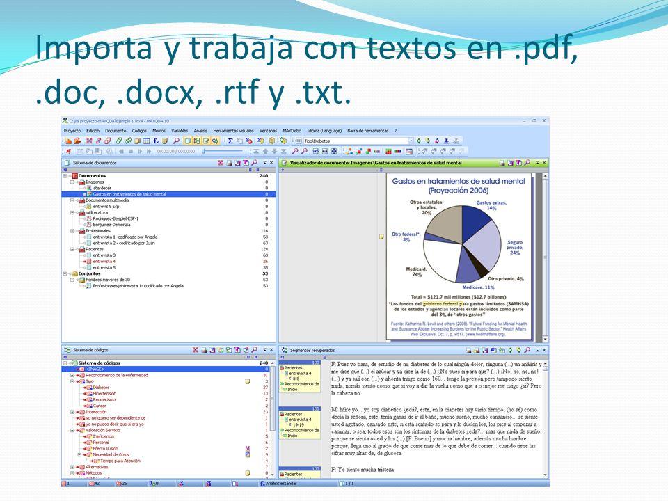 Importa y trabaja con textos en.pdf,.doc,.docx,.rtf y.txt.