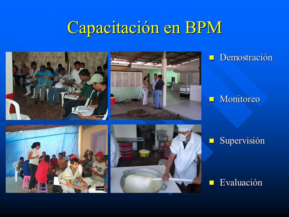 Capacitación en BPM Demostración Monitoreo Supervisión Evaluación