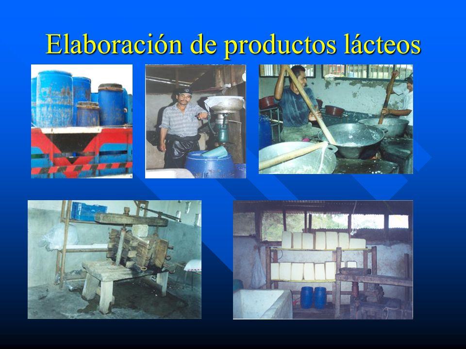 Capacitación en BPO Preparación de desinfectantes Preparación de soluciones
