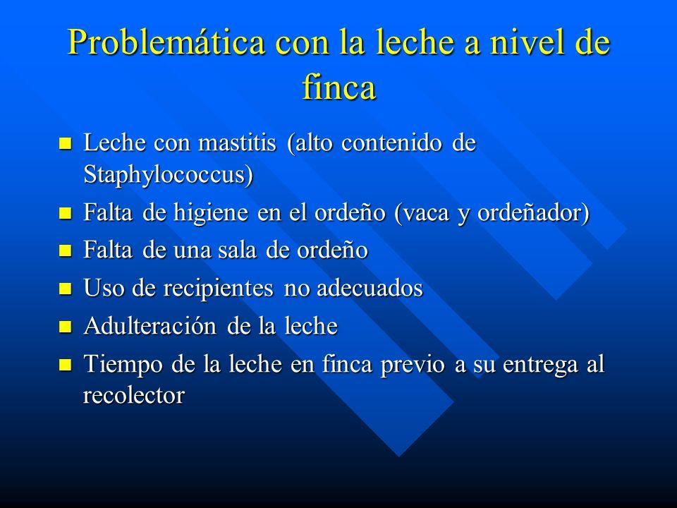 Problemática con la leche a nivel de finca Leche con mastitis (alto contenido de Staphylococcus) Leche con mastitis (alto contenido de Staphylococcus)