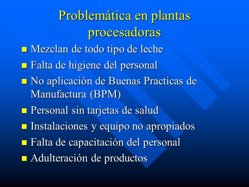 Problemática en plantas procesadoras Mezclan de todo tipo de leche Mezclan de todo tipo de leche Falta de higiene del personal Falta de higiene del pe