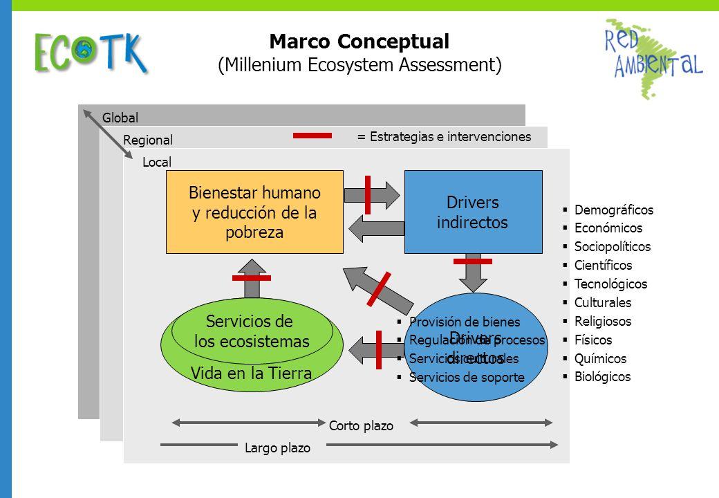 Marco Conceptual (Millenium Ecosystem Assessment) Drivers indirectos = Estrategias e intervenciones Bienestar humano y reducción de la pobreza Vida en