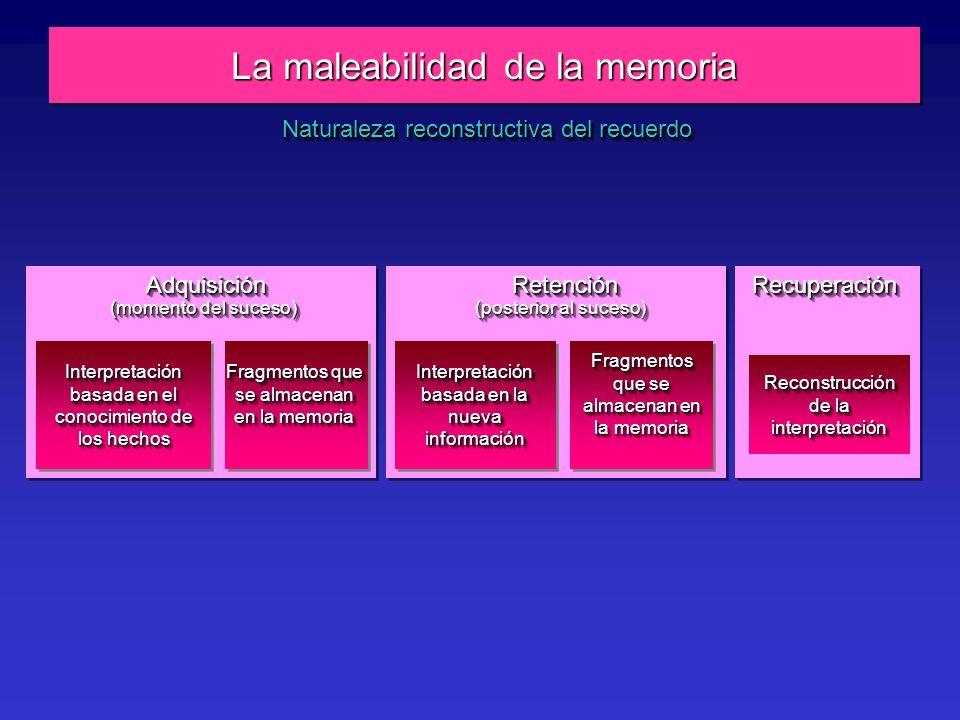 La maleabilidad de la memoria Interpretación basada en el conocimiento de los hechos Fragmentos que se almacenan en la memoria Interpretación basada en la nueva información Fragmentos que se almacenan en la memoria Reconstrucción de la interpretación AdquisiciónAdquisición (momento del suceso) RetenciónRetención (posterior al suceso) RecuperaciónRecuperación Naturaleza reconstructiva del recuerdo