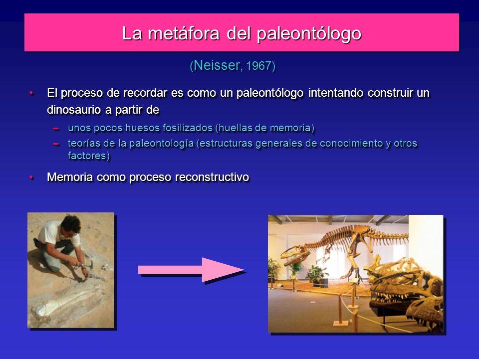 La metáfora del paleontólogo El proceso de recordar es como un paleontólogo intentando construir un dinosaurio a partir deEl proceso de recordar es como un paleontólogo intentando construir un dinosaurio a partir de – unos pocos huesos fosilizados (huellas de memoria) – teorías de la paleontología (estructuras generales de conocimiento y otros factores) Memoria como proceso reconstructivoMemoria como proceso reconstructivo El proceso de recordar es como un paleontólogo intentando construir un dinosaurio a partir deEl proceso de recordar es como un paleontólogo intentando construir un dinosaurio a partir de – unos pocos huesos fosilizados (huellas de memoria) – teorías de la paleontología (estructuras generales de conocimiento y otros factores) Memoria como proceso reconstructivoMemoria como proceso reconstructivo ( Neisser, 1967)
