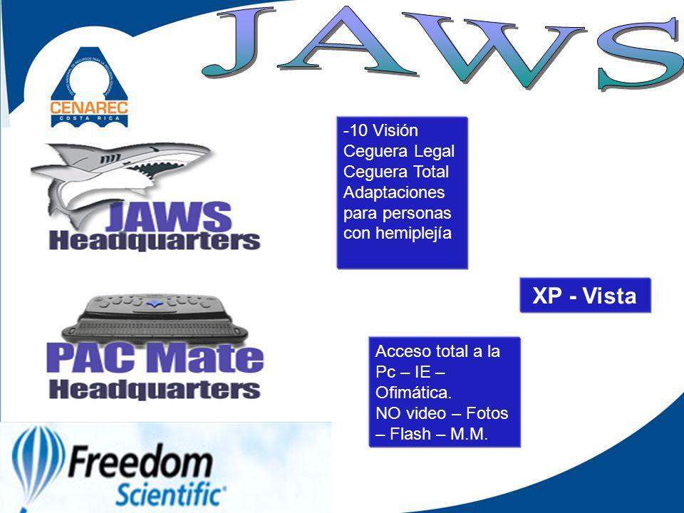 -10 Visión Ceguera Legal Ceguera Total Adaptaciones para personas con hemiplejía XP - Vista Acceso total a la Pc – IE – Ofimática.