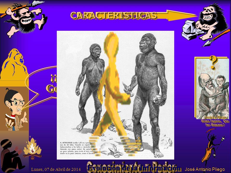 ¡¡ Fíjese Gorilón !. . ¿Será Lo Mismo Homo Sapiens, Que Ser Humano.