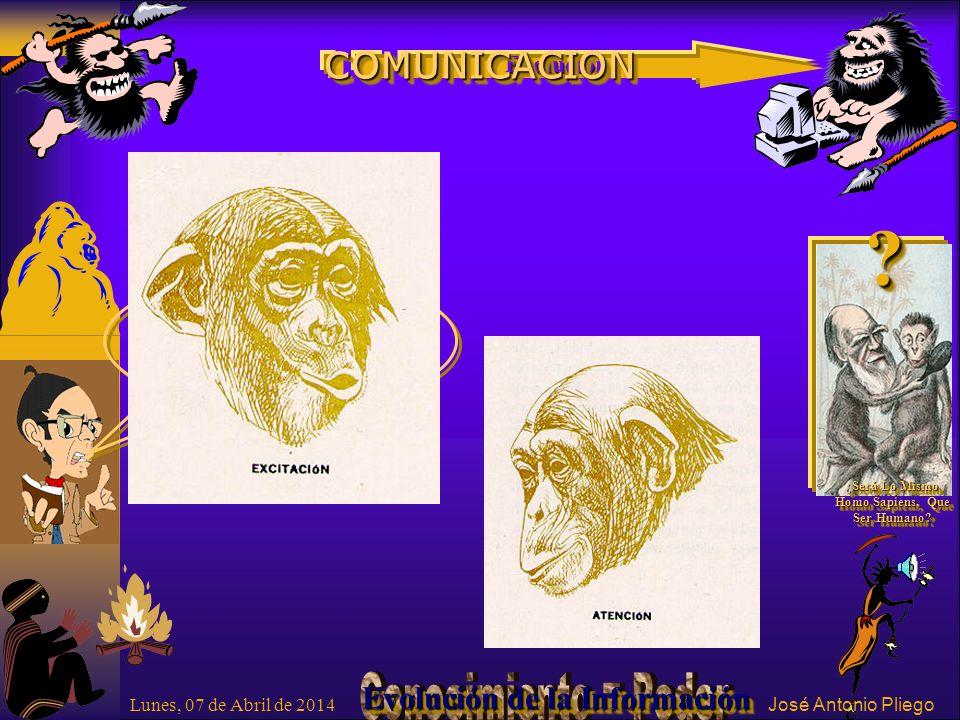¡¡ Fíjese Gorilón !.?. ¿Será Lo Mismo Homo Sapiens, Que Ser Humano.