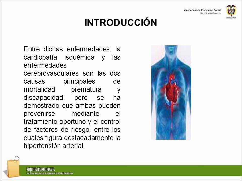 INTRODUCCIÓN Entre dichas enfermedades, la cardiopatía isquémica y las enfermedades cerebrovasculares son las dos causas principales de mortalidad pre
