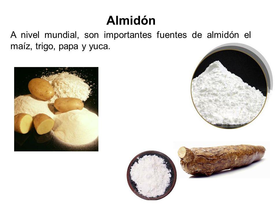 Estructura y síntesis del almidón Es un carbohidrato complejo, polímero de moléculas de glucosa. Se presenta en dos formas principales: amilosa; y ami