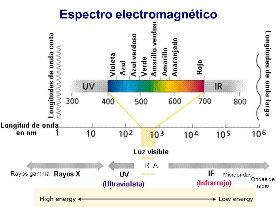 La radiación influye sobre la temperatura del aire, y la humedad relativa y sobre la difusión del CO 2, el ABA afecta al grado de apertura estomática.