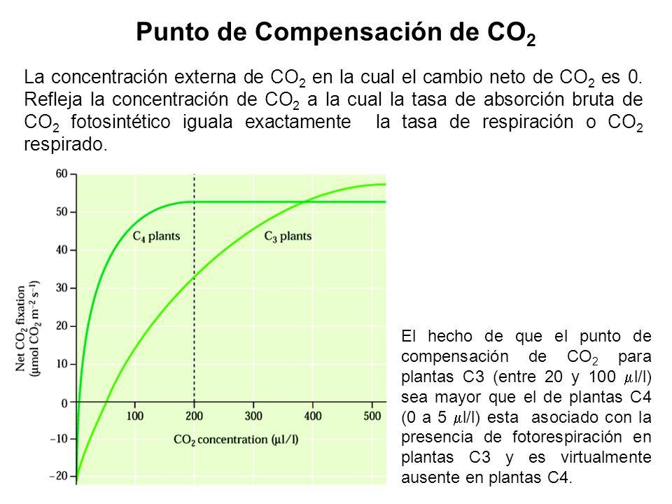 CO 2 Niveles de CO 2 en el aire Incremento de la concentración de CO2, temperatura asociado con el efecto invernadero pueden influir en la Fotosíntesi