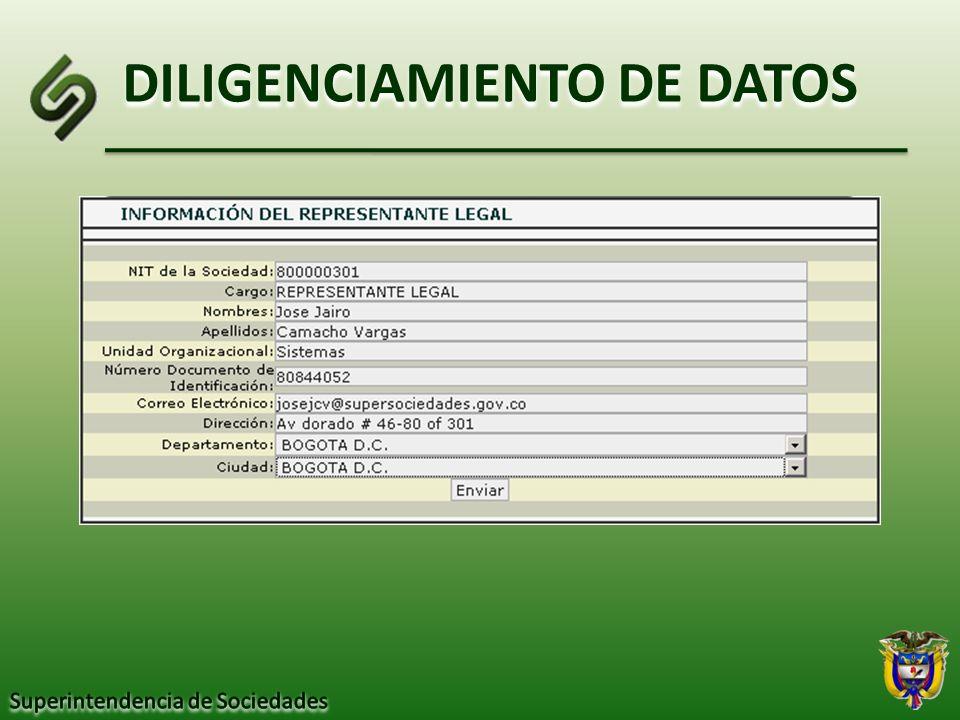 DILIGENCIAMIENTO DE DATOS