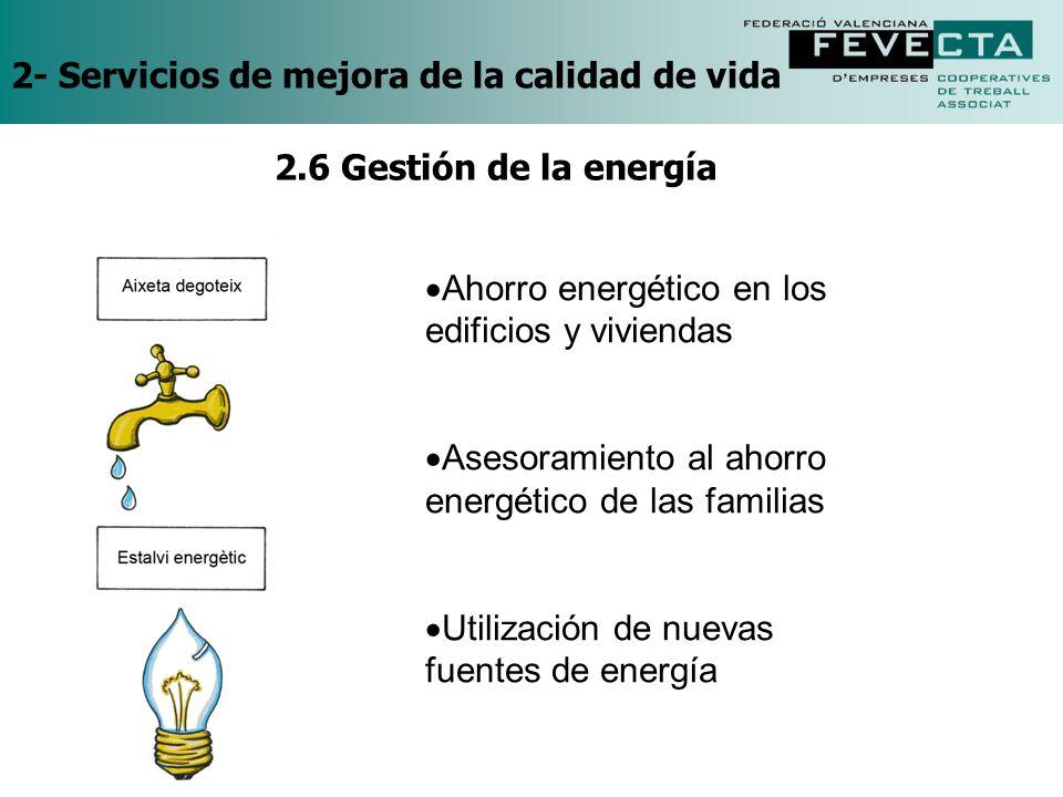 2- Servicios de mejora de la calidad de vida Ahorro energético en los edificios y viviendas Asesoramiento al ahorro energético de las familias Utiliza