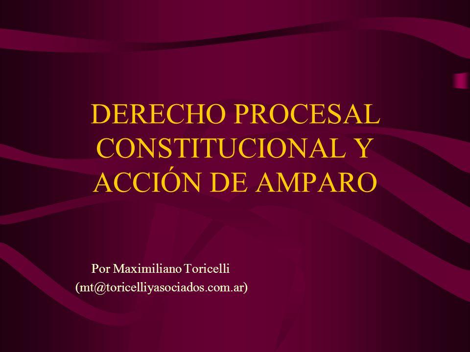 DERECHO PROCESAL CONSTITUCIONAL Y ACCIÓN DE AMPARO Por Maximiliano Toricelli (mt@toricelliyasociados.com.ar)