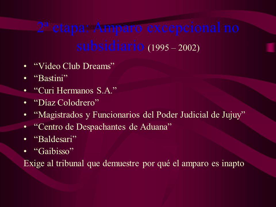 2ª etapa: Amparo excepcional no subsidiario (1995 – 2002) Video Club Dreams Bastini Curi Hermanos S.A. Díaz Colodrero Magistrados y Funcionarios del P