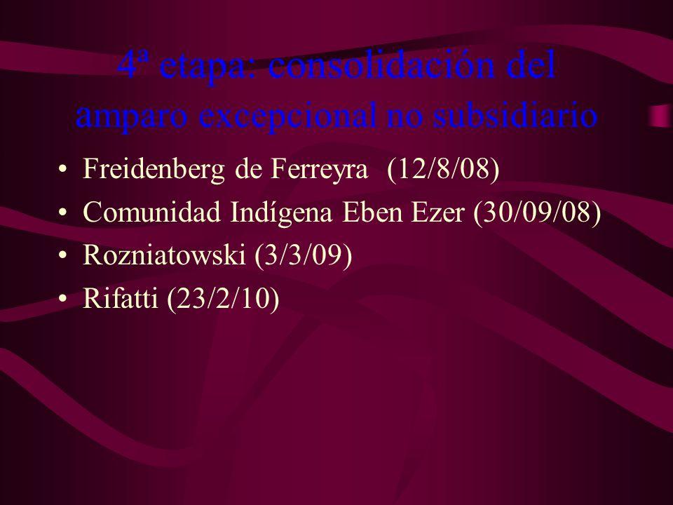 4ª etapa: consolidación del a mparo excepcional no subsidiario Freidenberg de Ferreyra (12/8/08) Comunidad Indígena Eben Ezer (30/09/08) Rozniatowski