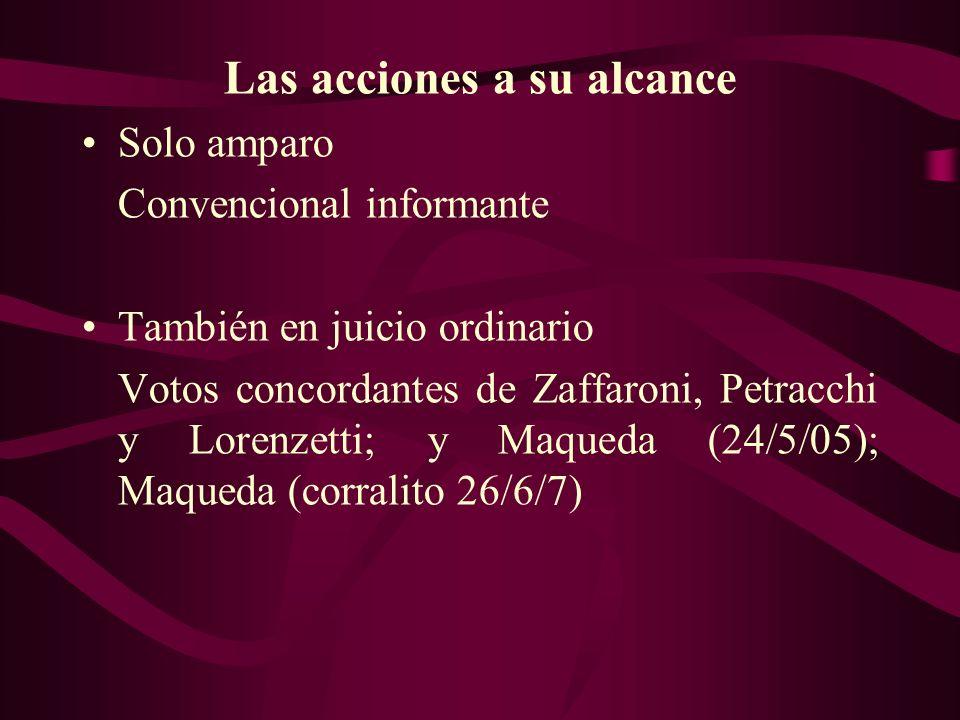 Las acciones a su alcance Solo amparo Convencional informante También en juicio ordinario Votos concordantes de Zaffaroni, Petracchi y Lorenzetti; y M