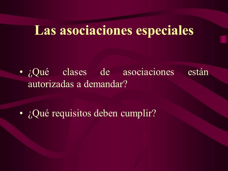 Las asociaciones especiales ¿Qué clases de asociaciones están autorizadas a demandar? ¿Qué requisitos deben cumplir?