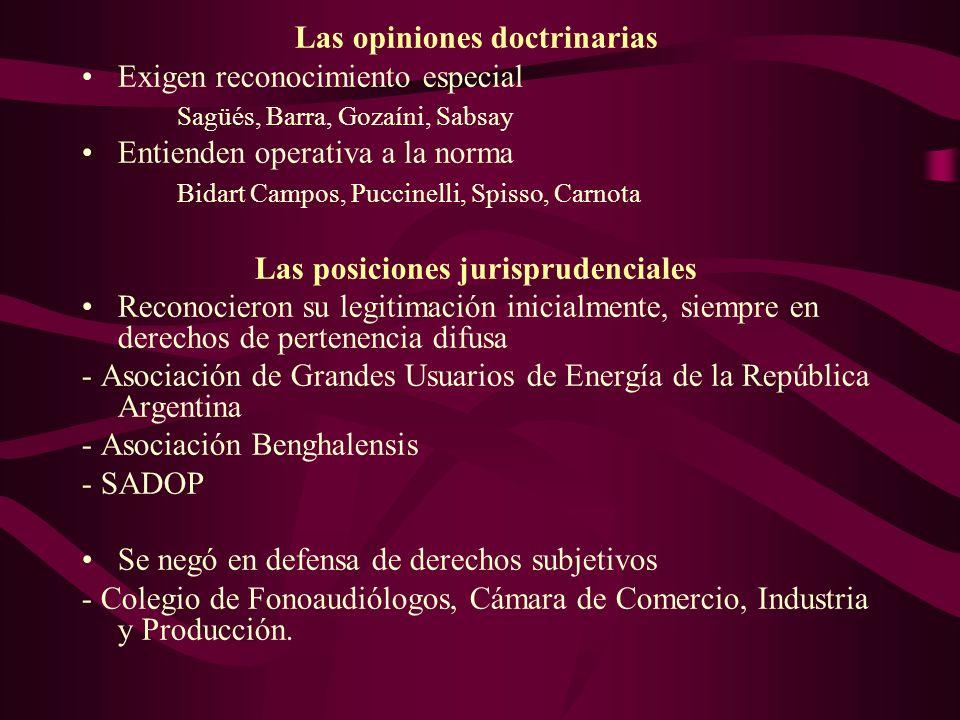 Las opiniones doctrinarias. Exigen reconocimiento especial Sagüés, Barra, Gozaíni, Sabsay Entienden operativa a la norma Bidart Campos, Puccinelli, Sp