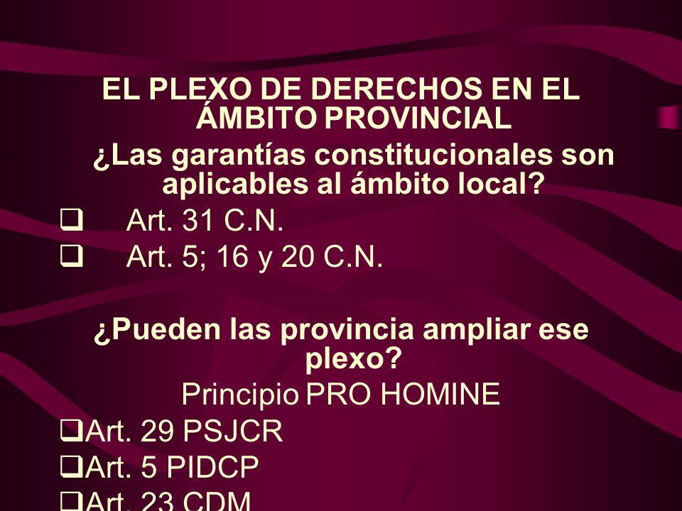 EL PLEXO DE DERECHOS EN EL ÁMBITO PROVINCIAL ¿Las garantías constitucionales son aplicables al ámbito local? Art. 31 C.N. Art. 5; 16 y 20 C.N. ¿Pueden