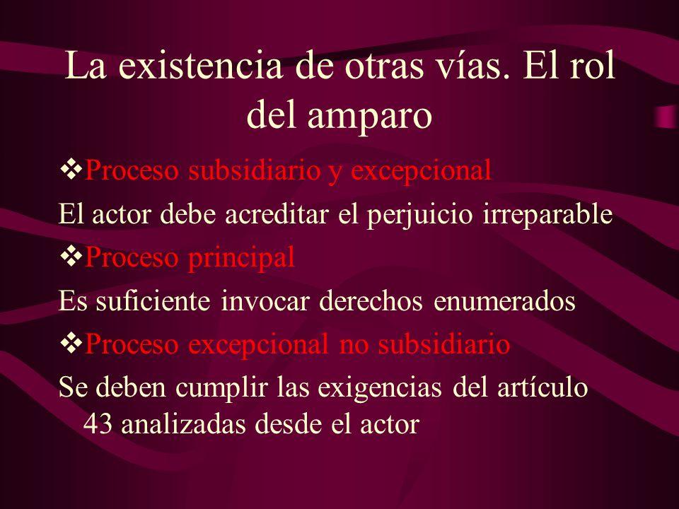 La existencia de otras vías. El rol del amparo Proceso subsidiario y excepcional El actor debe acreditar el perjuicio irreparable Proceso principal Es