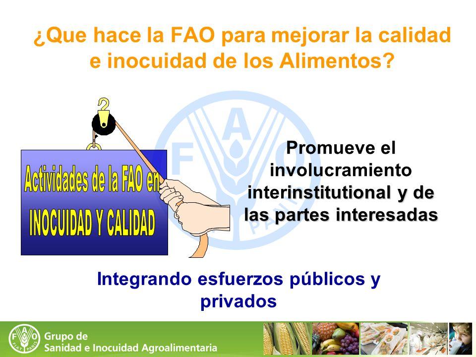 institutional y de las partes interesadas Promueve el involucramiento interinstitutional y de las partes interesadas Integrando esfuerzos públicos y p