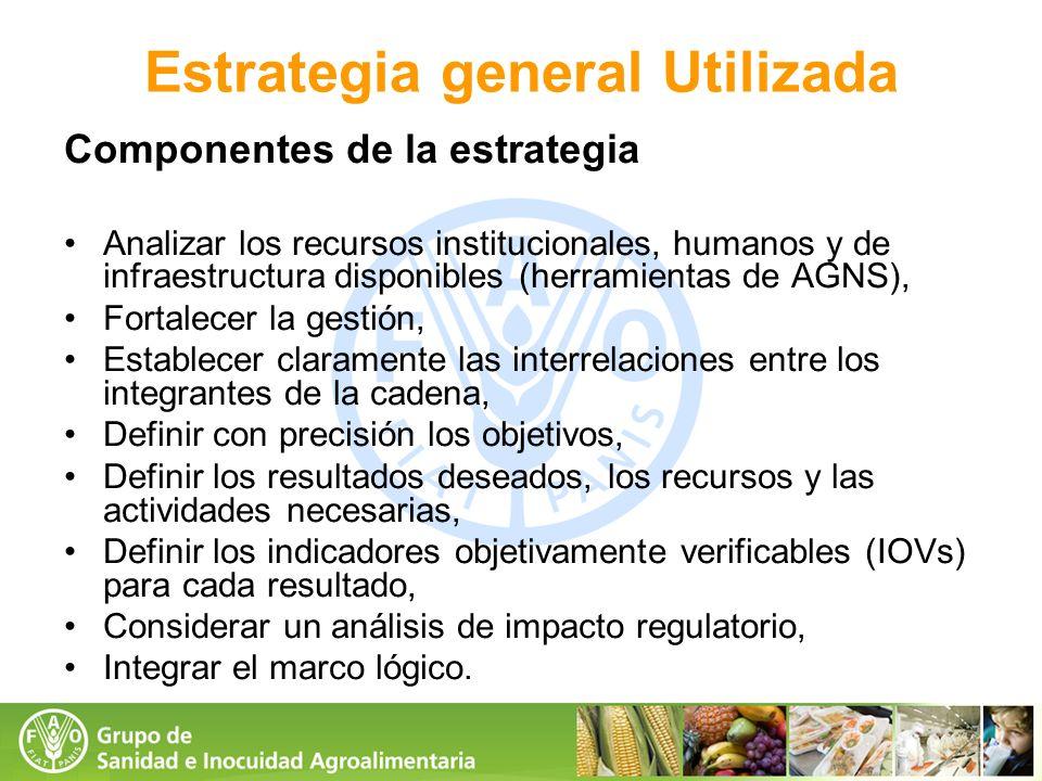 Componentes de la estrategia Analizar los recursos institucionales, humanos y de infraestructura disponibles (herramientas de AGNS), Fortalecer la ges