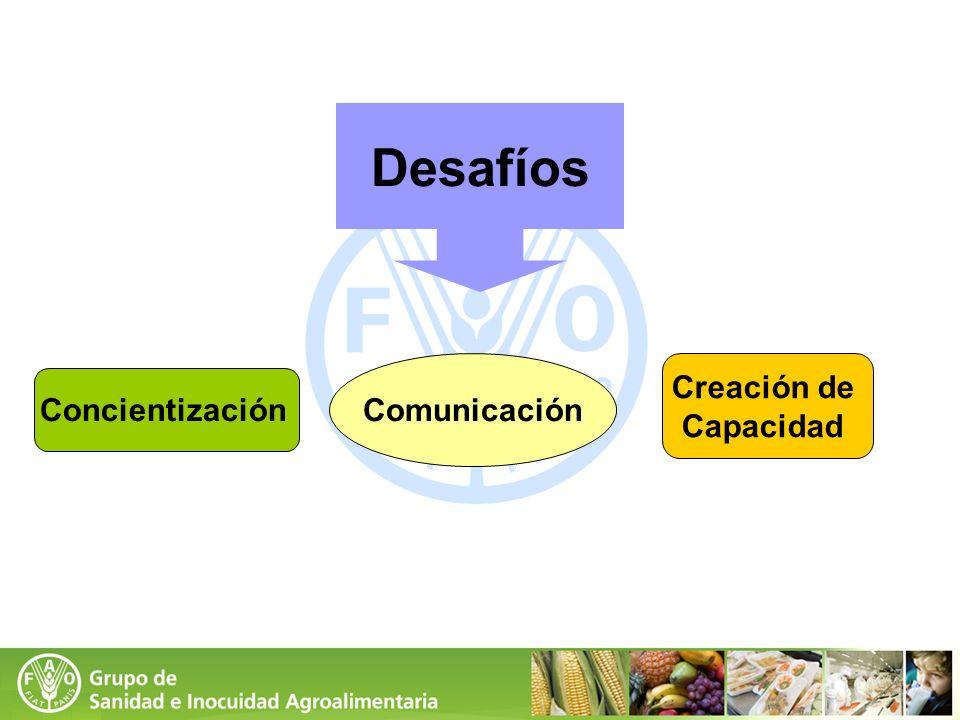 Concientización Creación de Capacidad Comunicación Desafíos