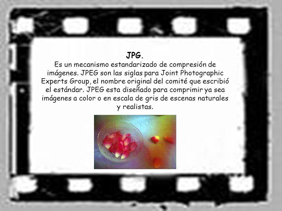 JPG.Es un mecanismo estandarizado de compresión de imágenes.