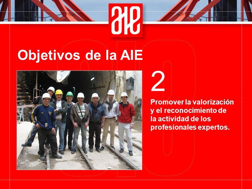 Objetivos de la AIE Promover la valorización y el reconocimiento de la actividad de los profesionales expertos.