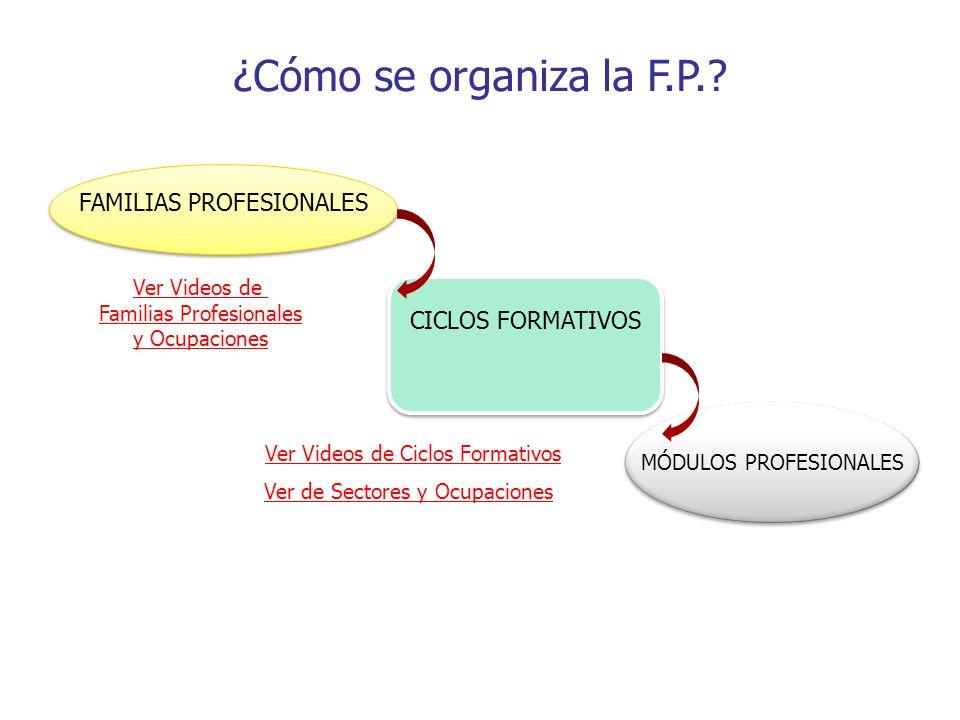 ¿Cómo se organiza la F.P.? FAMILIAS PROFESIONALES CICLOS FORMATIVOS MÓDULOS PROFESIONALES Ver Videos de Ciclos Formativos Ver Videos de Familias Profe