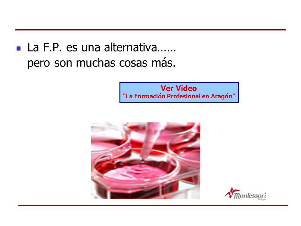La F.P. es una alternativa…… pero son muchas cosas más. Ver Video La Formación Profesional en Aragón